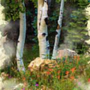 The North Rim Forest Art Print