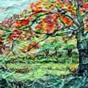 The Old Maple Tree Art Print