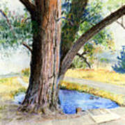 The Old Tree Art Print