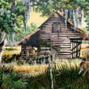 Old Floridaturpentine Barn-a Florida Memory Art Print