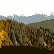 The Olympic Mountains Art Print