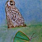 The Owl And The Butterfly Art Print