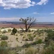 The Painted Desert Of Utah 2 Art Print
