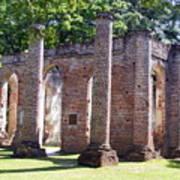 The Palmetto Phoenix Old Sheldon Church Ruins Art Print by Elena Tudor