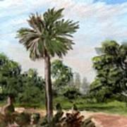 The Palmetto Tree Art Print
