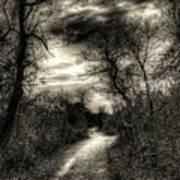 The Path Seldom Taken Art Print