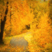 The Pathway Of Fallen Leaves Art Print
