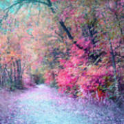 The Pathway Of Gentle Memories Art Print