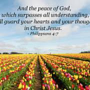 The Peace Of God Art Print