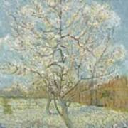 The Pink Peach Tree Arles, April - May 1888 Vincent Van Gogh 1853  1890 Art Print