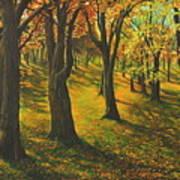 The Plains Of Abraham Art Print
