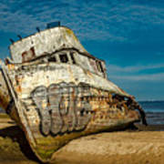 The Point Reyes Beached Art Print