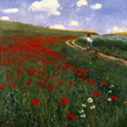 The Poppy Field Art Print