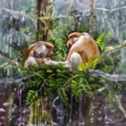 The Probosis Monkey Family Art Print