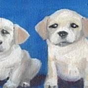 The Pups 2 Art Print