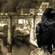 The Raven Of Knareborough Castle Art Print
