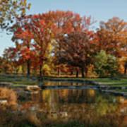 The Rich Autumn Colors In Forest Park. Art Print
