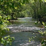 The River In Spring Art Print