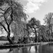 The River Wey,guildford, Surrey,england  Art Print