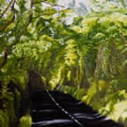 The Road Through Glenastar Art Print
