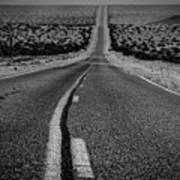 The Road To Shoshone Art Print