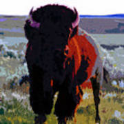 The Shamans Buffalo Art Print