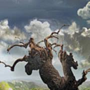 The Soul Of A Tree Art Print