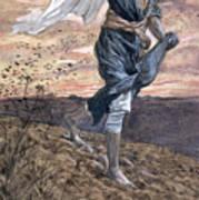 The Sower Art Print
