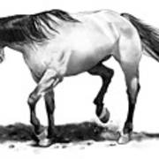 The Stallion Art Print