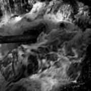 The Stream In Bw Art Print