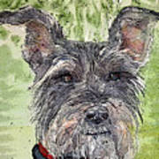 The Terrier Art Print