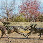 The Track - Thoroughbred Park - Lexington Kentucky Usa Art Print