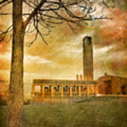 The Tree And The Bell Tower Art Print