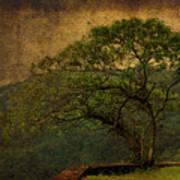 The Tree And The Range Art Print