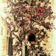The Tree In The Corner Of The Courtyard Art Print