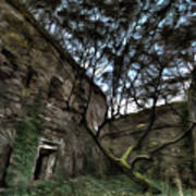 The Tree In The Fort - L'albero Tra Le Mura Del Forte Paint Art Print