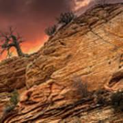 The Tree Of Zion Art Print