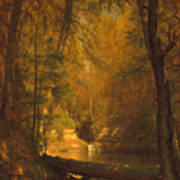 The Trout Pool Art Print