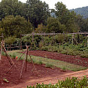 The Vegetable Garden At Monticello II Art Print