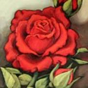 The Very Red Rose Art Print
