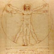 The Vitruvian Man Art Print by
