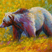 The Wandering One - Grizzly Bear Art Print
