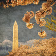 The Washington Monument Art Print