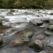 The Way A River Flows Art Print