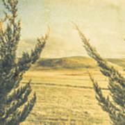 The Wayback Meadow Art Print