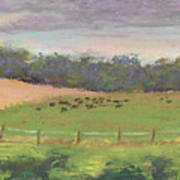 The West Cow Pasture Early Morning Art Print