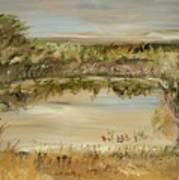 The Westfern Pond Art Print