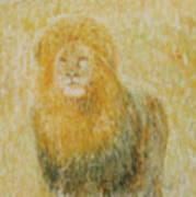The Wild  Lion Art Print