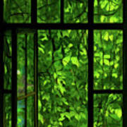 The Window Art Print by Dale Jackson