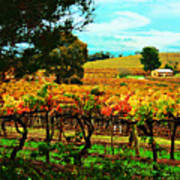 The Winemakers Residence Art Print